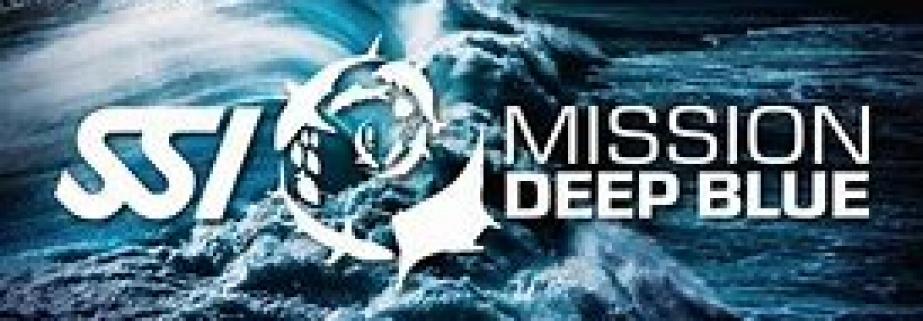 croppedimage923321-mission